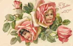 rosebabies