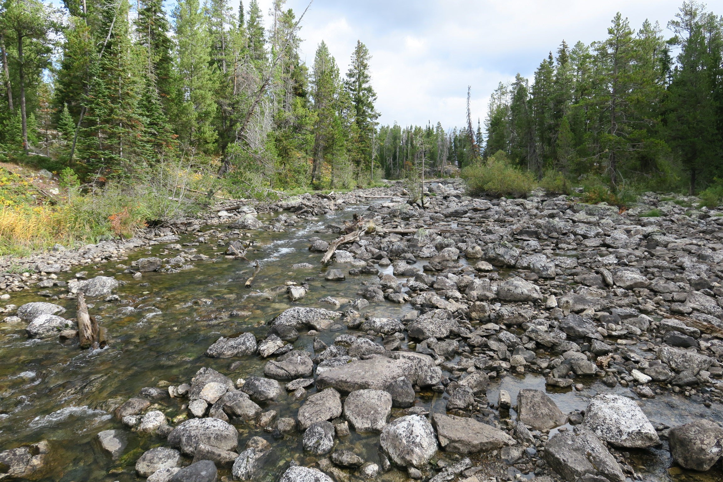 These smaller rocks and logs were also deposited by glaciers/meltwater ...